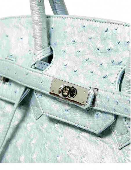 Precious Clouse Luxurt Ostrich Ladies' Bag