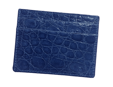 Electric Blue Small Credit Card Case