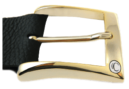 Shiny Gold Casual Buckle