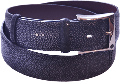 Blue Stingray Men's Belt