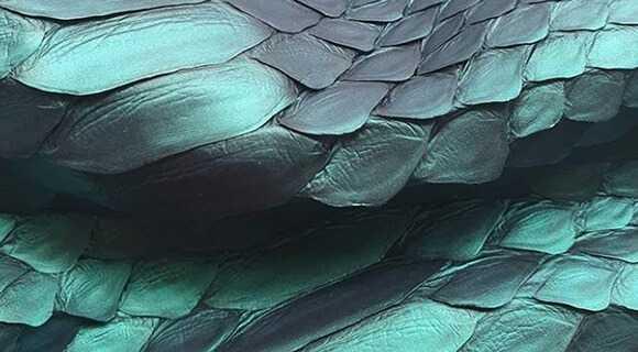 Alligator Leather Panel