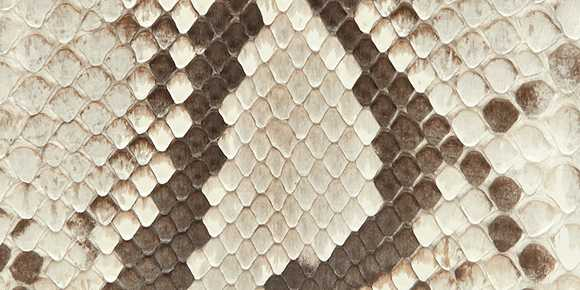 Snakeskin Rock Python Leather